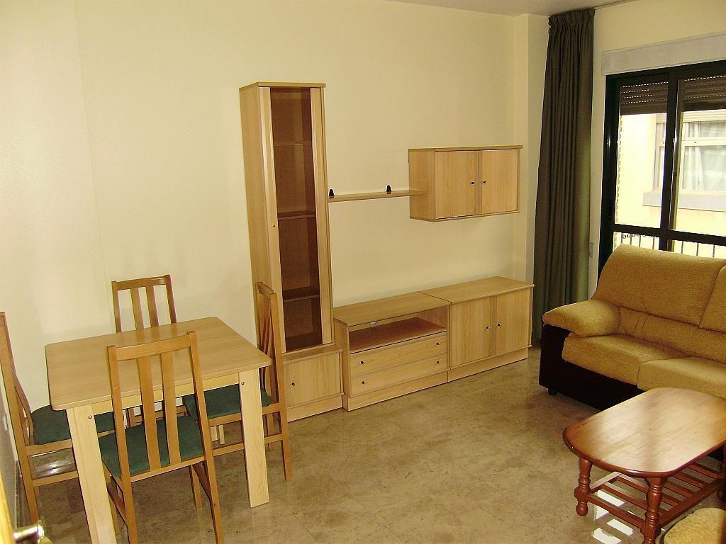 Salón - Apartamento en alquiler en calle Matadero Viejo, El Carmen en Murcia - 250408546