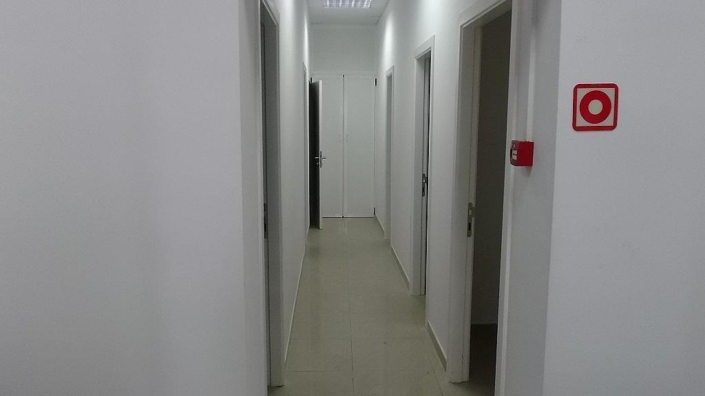 Pasillo - Local en alquiler en calle Secretario Padilla, Guanarteme en Palmas de Gran Canaria(Las) - 234437024