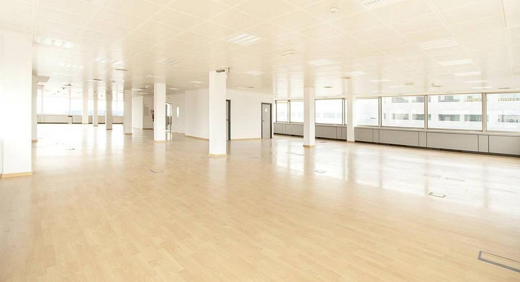 Oficina en alquiler en calle Diagonal, Les corts en Barcelona - 279719675