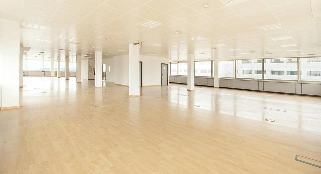 Oficina en alquiler en calle Diagonal, Les corts en Barcelona - 279719681