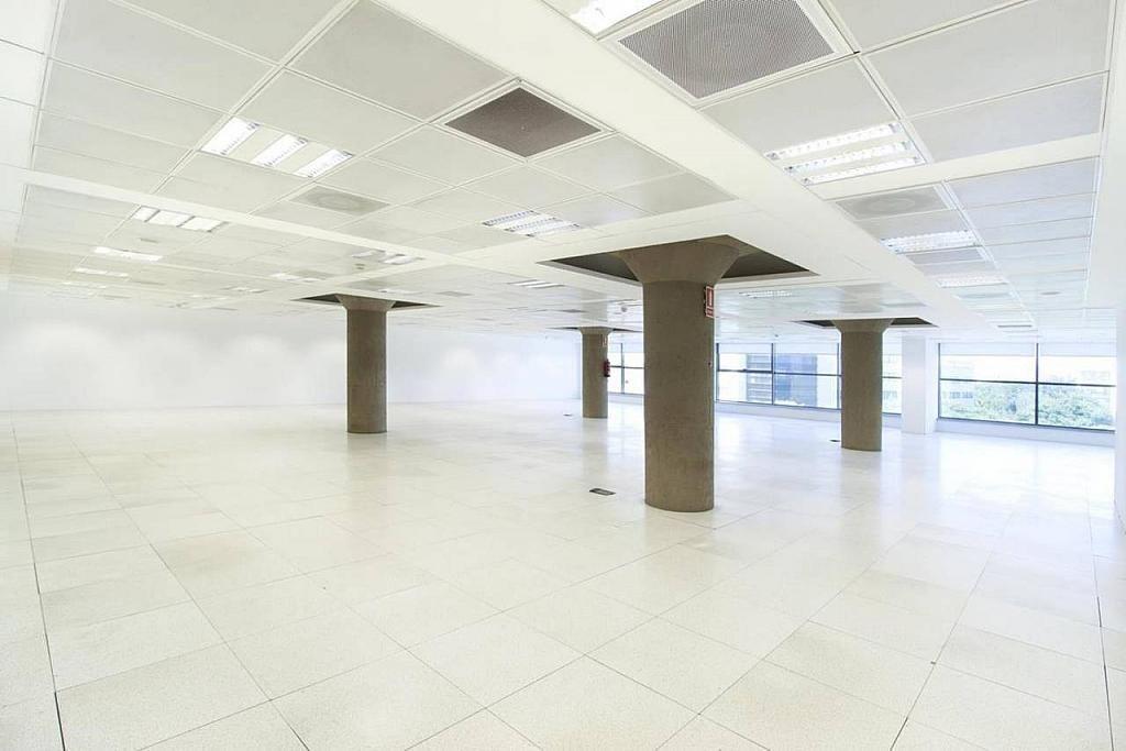 Oficina en alquiler en calle Joan D'austria, La Vila Olímpica en Barcelona - 373179860