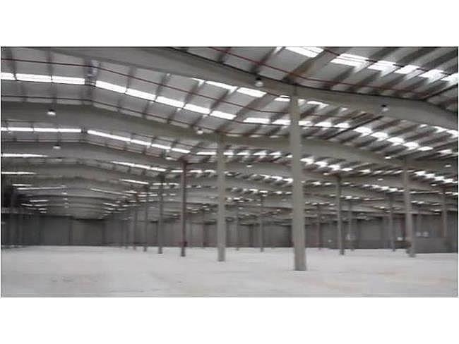 Nave industrial en alquiler en calle El Pla de Santa Maria, Pla de Santa Maria, el - 153844063