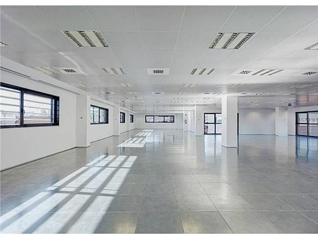 Oficina en alquiler en calle Antic de Valencia, Barcelona - 161249845