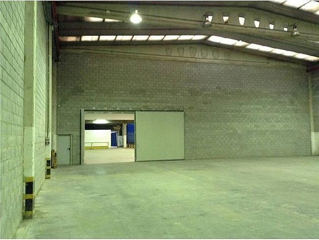 Nave industrial en alquiler en calle Pratenc, Prat de Llobregat, El - 167059316