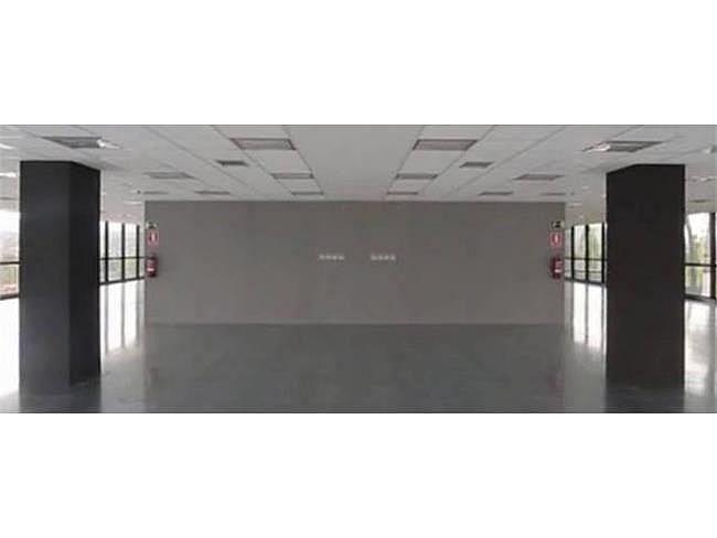 Oficina en alquiler en calle Camí de Can Ametller, Sant Cugat del Vallès - 171490295