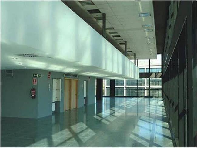 Oficina en alquiler en calle Camí de Can Ametller, Sant Cugat del Vallès - 171490313