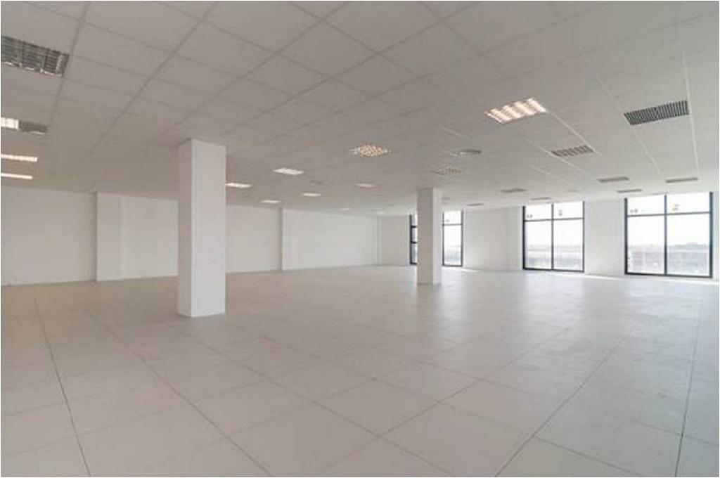 Oficina en alquiler en calle Pablo Iglesias, Gran Via LH en Hospitalet de Llobregat, L´ - 240353154
