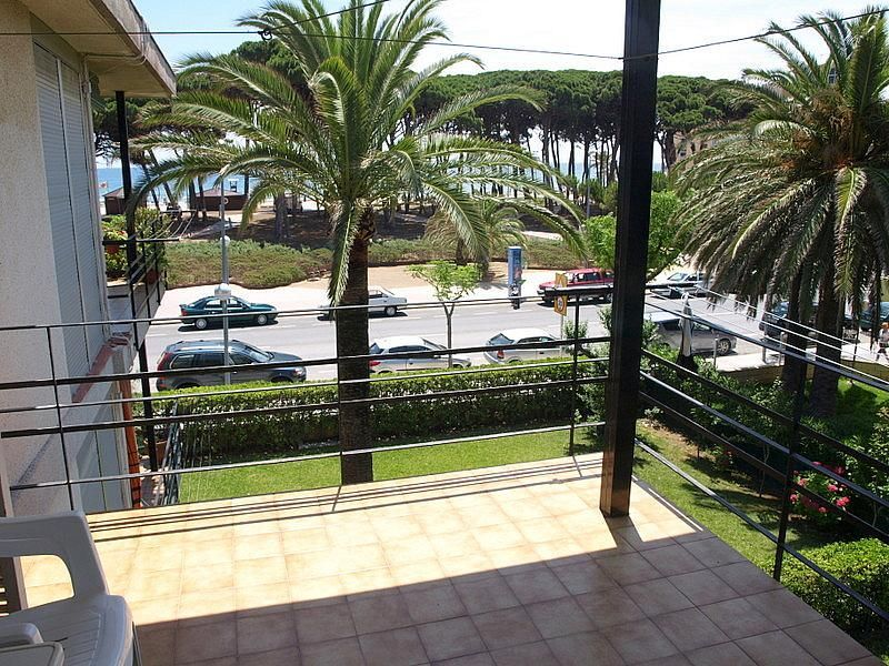 Terraza - Apartamento en venta en calle Pau Casals, Pineda, La - 200426098