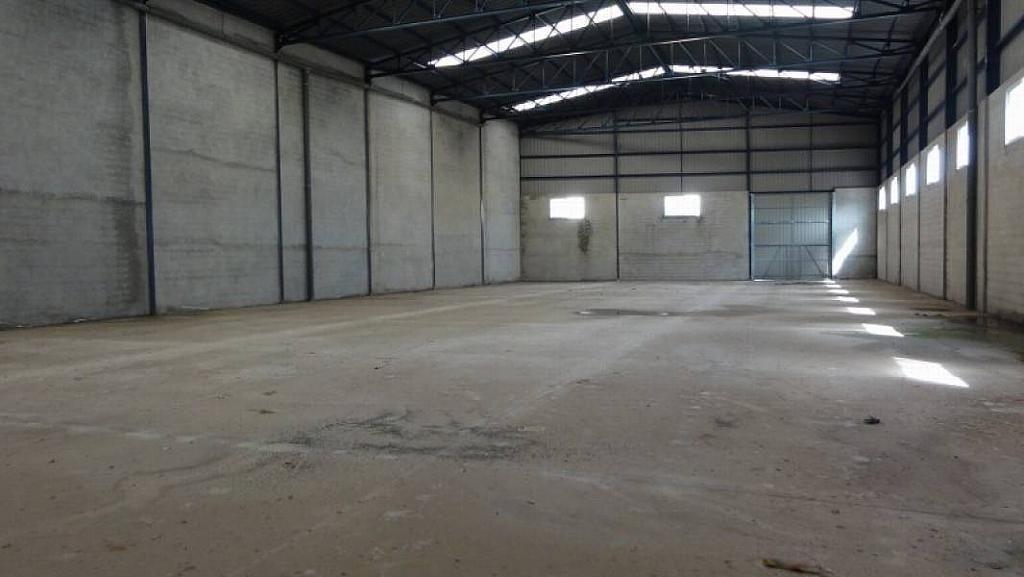 Foto - Nave industrial en alquiler en Massamagrell - 276960246