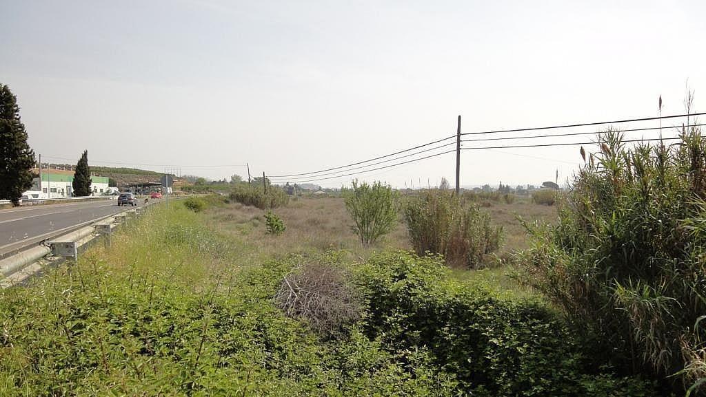 Imagen del inmueble - Terreno en alquiler en calle , Lleida - 226003026