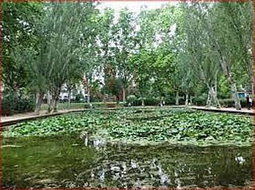 Entorno - Local en alquiler en paseo De la Bonanova, Les Tres Torres en Barcelona - 323452147