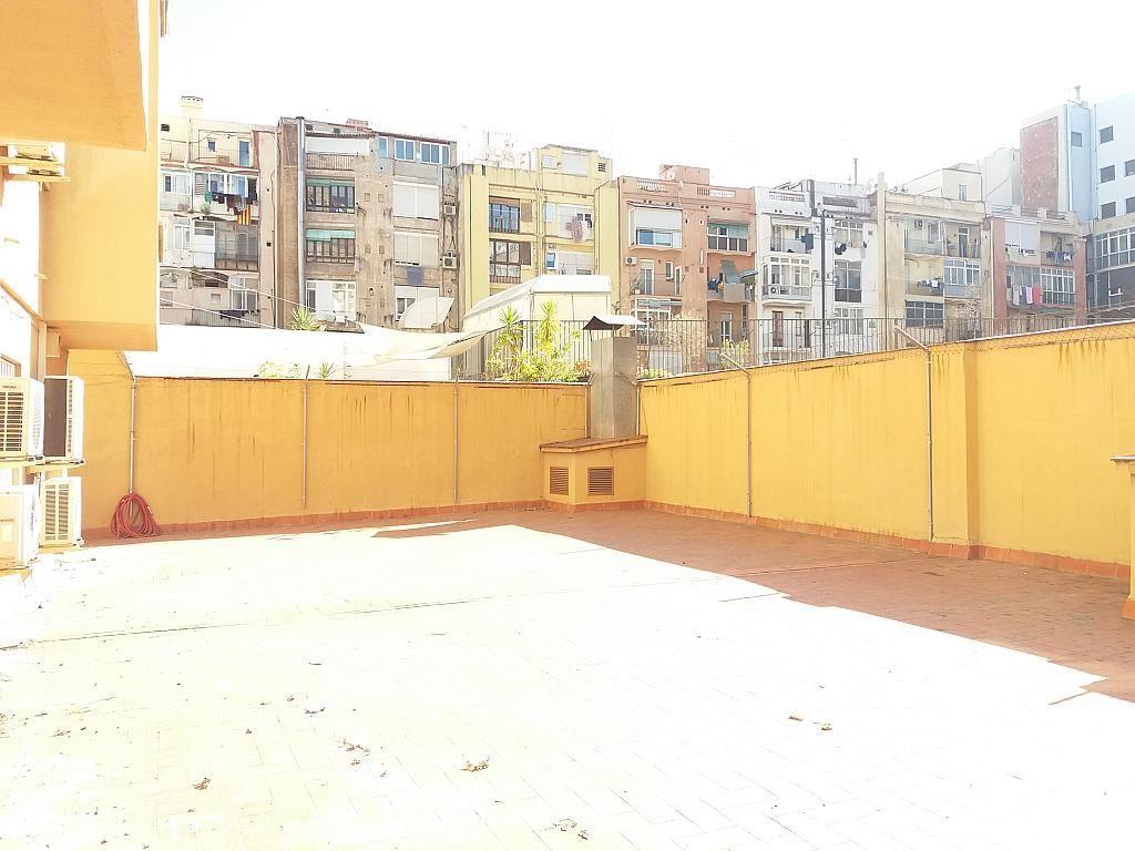 Oficina en alquiler en calle Sepúlveda, Sant Antoni en Barcelona - 269724317