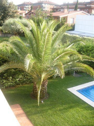 Vistas - Chalet en alquiler en calle Bernat Desclot, Sant Cugat del Vallès - 61470556