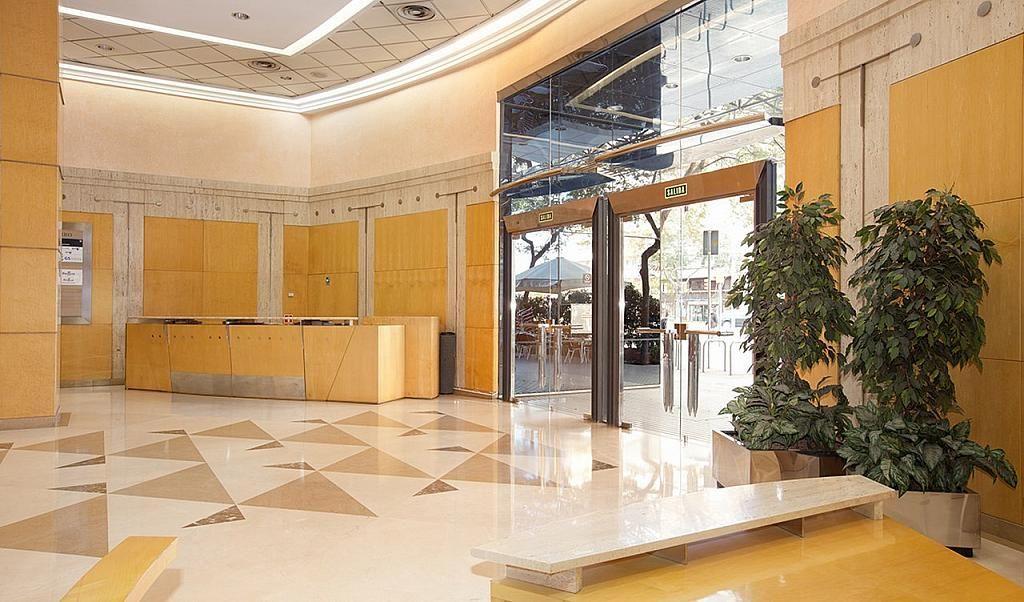 Oficina en alquiler en calle Tarragona, Hostafrancs en Barcelona - 395383643