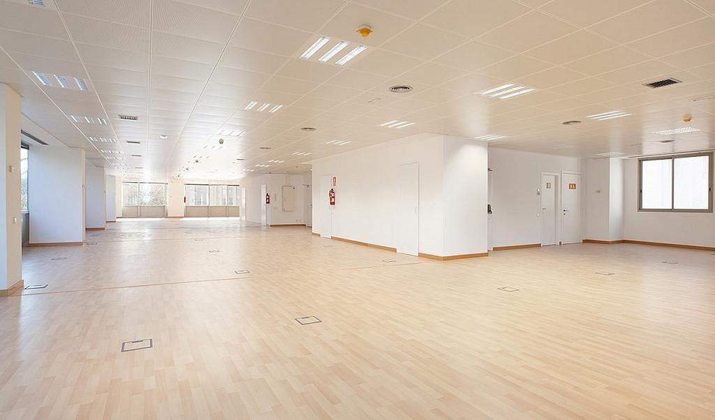 Oficina en alquiler en calle Tarragona, Hostafrancs en Barcelona - 395383650