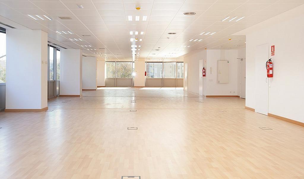 Oficina en alquiler en calle Tarragona, Hostafrancs en Barcelona - 395383653