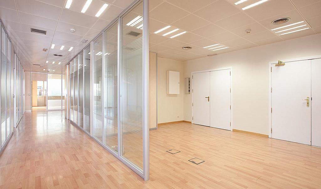 Oficina en alquiler en calle Tarragona, Hostafrancs en Barcelona - 395383670