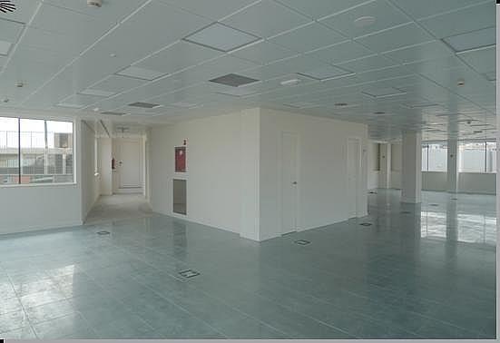 Oficina - Oficina en alquiler en calle Numancia, Eixample esquerra en Barcelona - 138371439