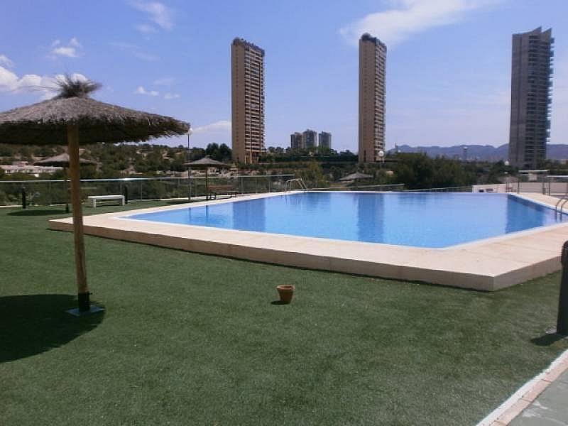 Foto - Apartamento en venta en Poniente en Benidorm - 295288235