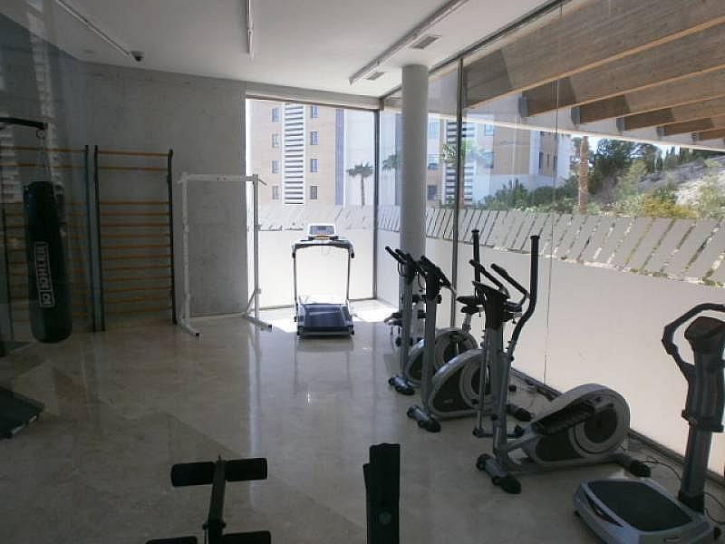 Foto - Apartamento en venta en Poniente en Benidorm - 295288274