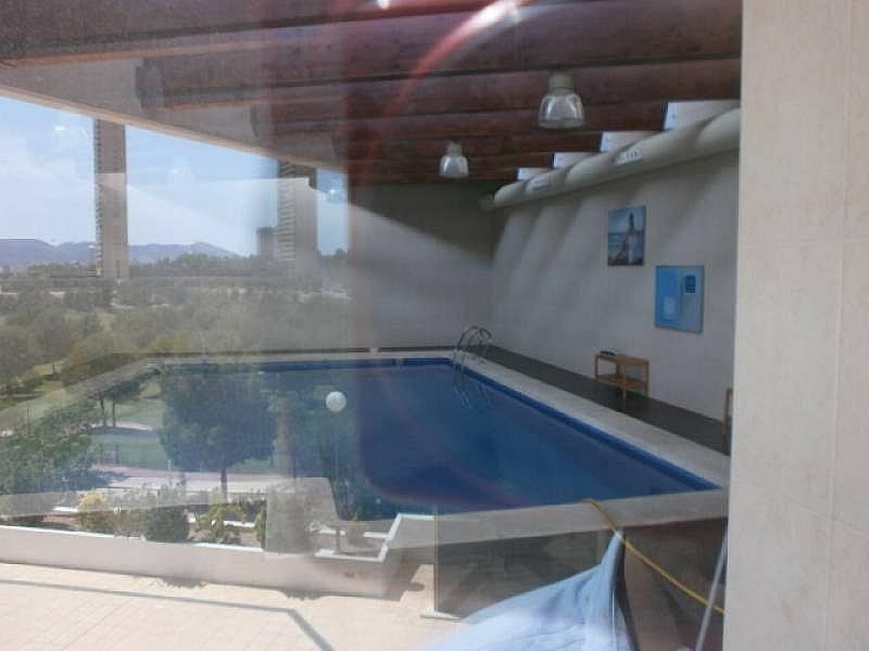 Foto - Apartamento en venta en Poniente en Benidorm - 295288289