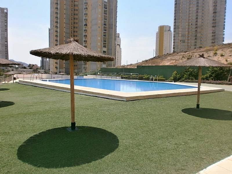 Foto - Apartamento en venta en Poniente en Benidorm - 295288292