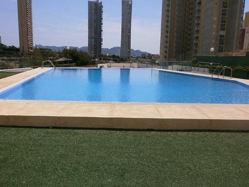 Foto - Apartamento en venta en Poniente en Benidorm - 295288295