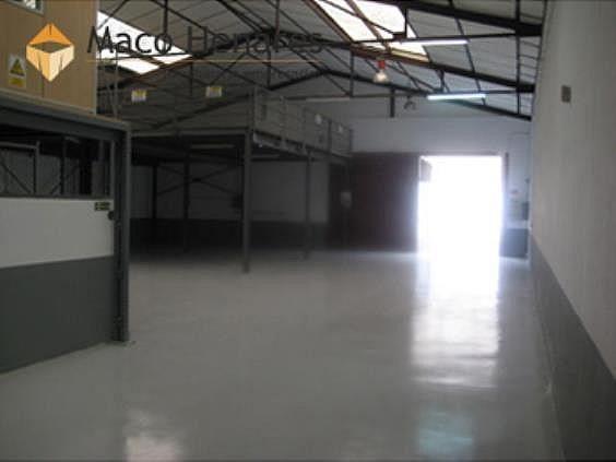 Nave industrial en alquiler en Montserrat en San Fernando de Henares - 291774553