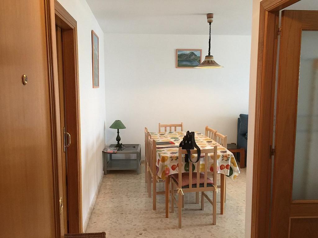 Apartamento en alquiler de temporada en calle Rosa Dels Vents, Playa de Gandia en Gandia - 244766419