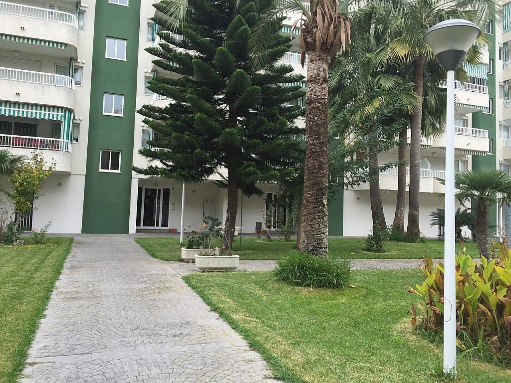 Apartamento en alquiler de temporada en calle Rosa Dels Vents, Playa de Gandia en Gandia - 244766480