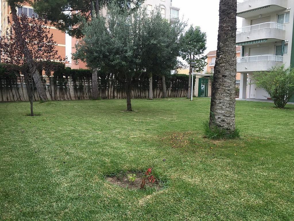 Apartamento en alquiler de temporada en calle Rosa Dels Vents, Playa de Gandia en Gandia - 244766489