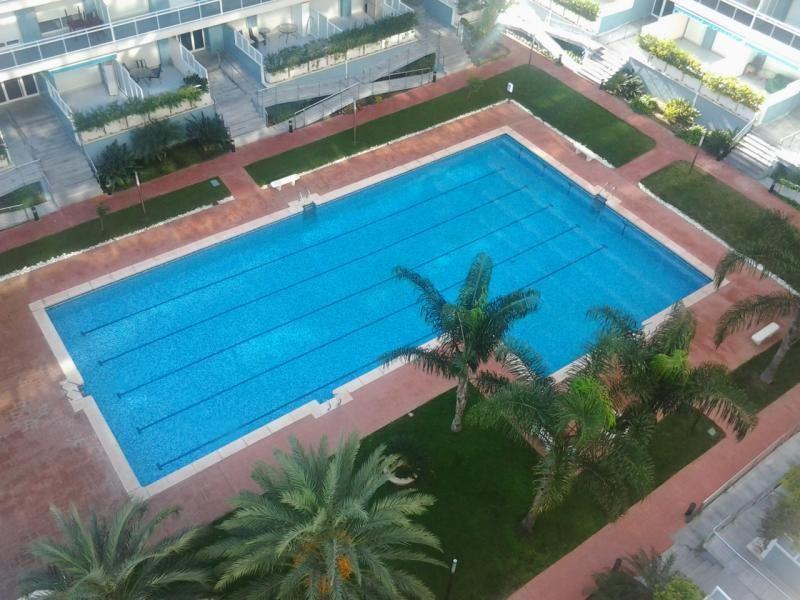 Apartamento en alquiler en calle Partida Redonda, Playa de Gandia en Gandia - 97520520
