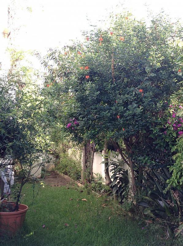 Casa en alquiler en urbanización Las Cumbres, Marbella Pueblo en Marbella - 289477918