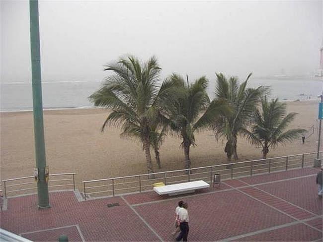 Apartamento en alquiler en Palmas de Gran Canaria(Las) - 148171609