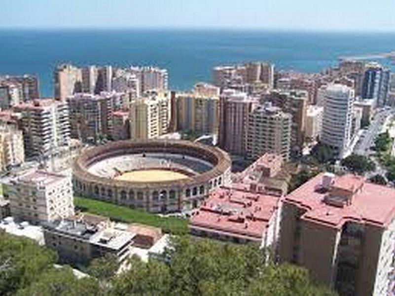 Foto - Local comercial en alquiler en calle Malaga Este, El Candado-El Palo en Málaga - 325999203