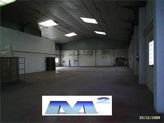 Nave industrial en alquiler en Fuente el Saz de Jarama - 127778919