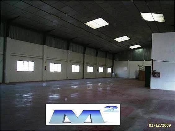 Nave industrial en alquiler en Fuente el Saz de Jarama - 127778920
