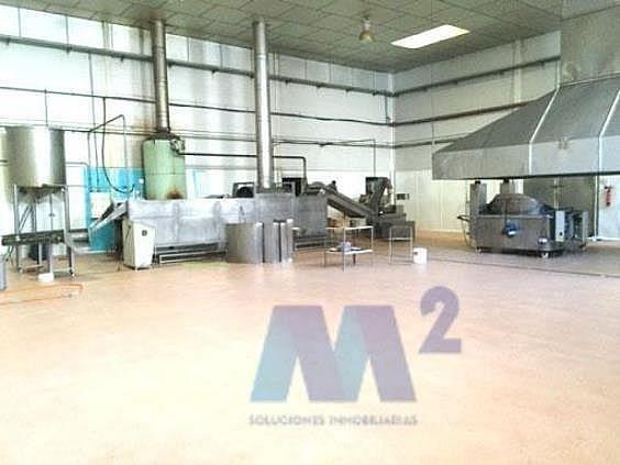 Nave industrial en alquiler en Casarrubios del Monte - 200071868