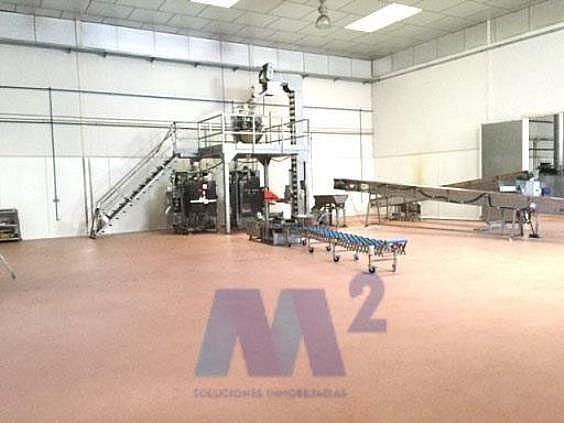 Nave industrial en alquiler en Casarrubios del Monte - 200071874