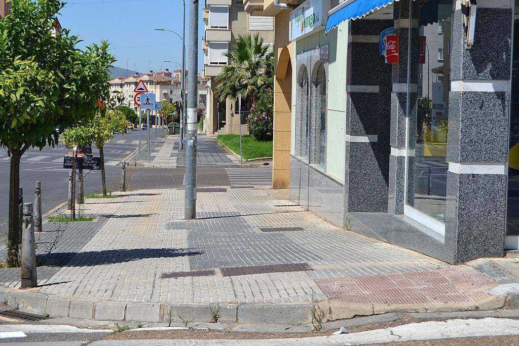Fachada - Local comercial en alquiler en calle Lusitania, Mérida - 300290749
