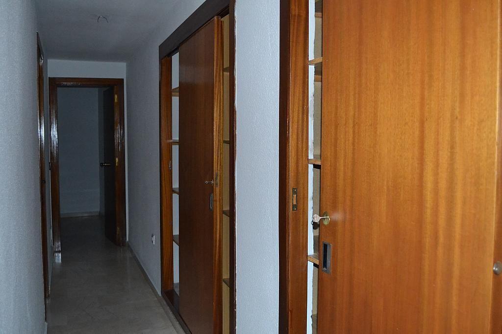Pasillo - Piso en alquiler en rambla Sta Eulalia, Mérida - 206515140
