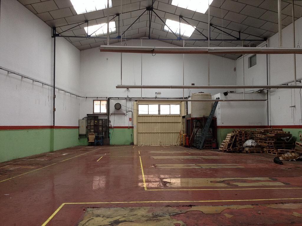 Planta baja - Nave en alquiler en Prat de Llobregat, El - 250831032
