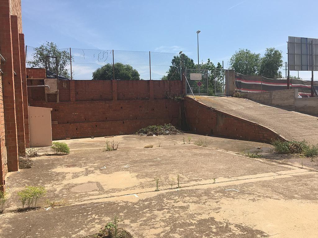 Patio delantero - Nave en alquiler en Esplugues de Llobregat - 279451340