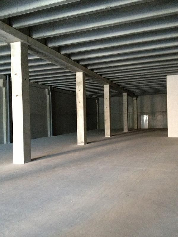 Planta baja - Nave industrial en alquiler en Sant Boi de Llobregat - 241562810