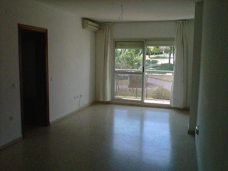 Foto - Piso en alquiler en Montequinto en Dos Hermanas - 184827857