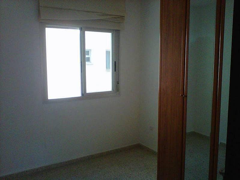 Foto - Piso en alquiler en Montequinto en Dos Hermanas - 184827872