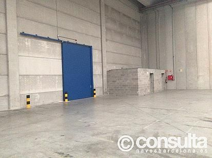 Planta baja - Nave industrial en alquiler en polígono Zal II, Zona Franca- Port en Barcelona - 370500260