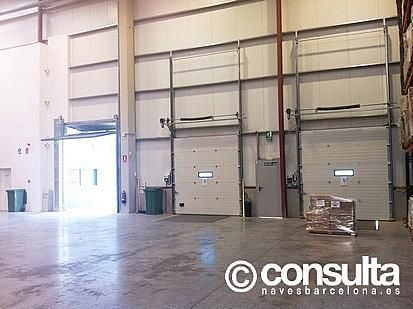 Planta baja - Nave industrial en alquiler en polígono Sant Feliu de Buixalleu, Sant Feliu de Buixalleu - 152623459