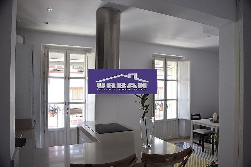 Apartamento en alquiler en calle fabi triana casco for Alquiler apartamento vacacional sevilla