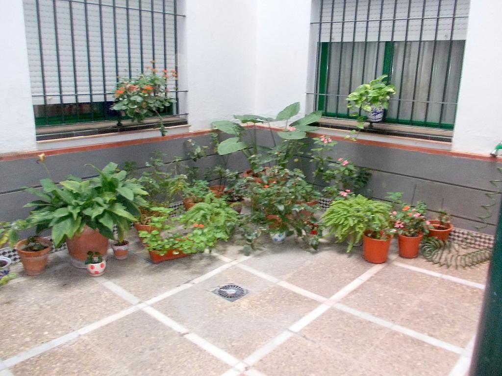 Piso en alquiler en calle Pages del Corro, El Tardón en Sevilla - 132075099